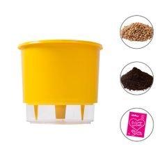 combo vaso medio amarelo raiz terra fertilizante pedra