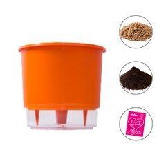 combo vaso medio laranja raiz terra fertilizante pedra