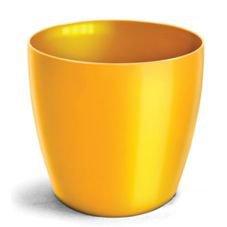 cachepo nutriplan elegance amarelo
