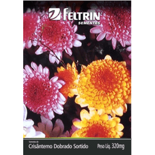 crisantemo dobrado feltrin