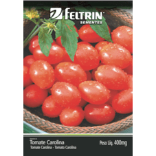 mini tomate carolina feltrin