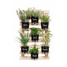 horta vertical 7 vasos gourmet