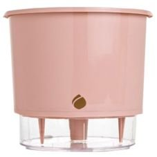 vaso medio rosa quartz raiz