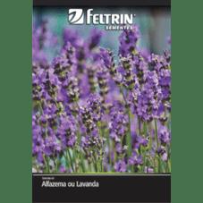 semente feltrin lavanda alfazema economica