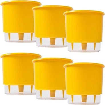 kit 6 vasos raiz autoirrigavel medio amarelo