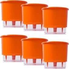 kit 6 vasos raiz autoirrigavel medio laranja