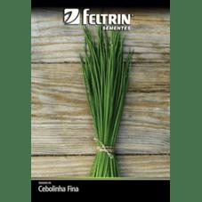 semente feltrin cebolinha fina