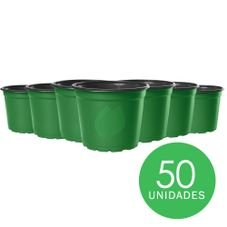 kit pote 15 holambra verde preto 50 unidades