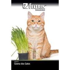 semente grama dos gatos feltrin eco