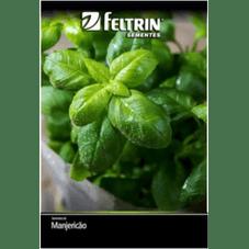 manjericao sabory feltrin eco 100 mg