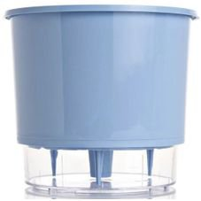 vaso raiz azul serenity