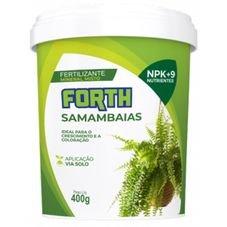 samambaia 400g forth