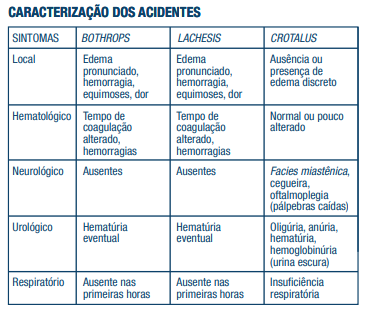 tabela acidentes master plus