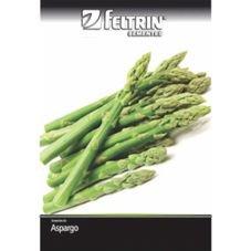 semente feltrin aspargo nilo 1 g