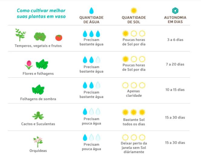 Vasos Raiz quantidade de gua para cada tipo de planta